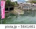 岡崎疎水 十石舟めぐり 5641461