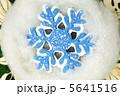 雪の結晶 スノー 雪の写真 5641516