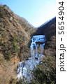 氷瀑 袋田の滝 滝の写真 5654904