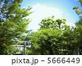 神社の鳥居と空 5666449