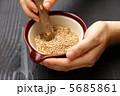 胡麻 ごま ゴマの写真 5685861