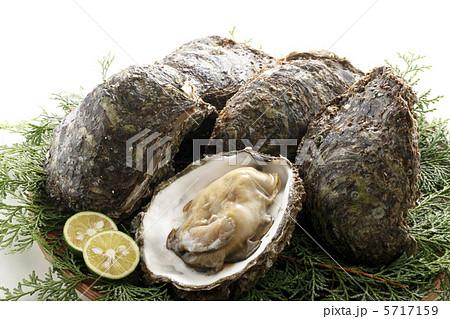 岩牡蠣 5717159