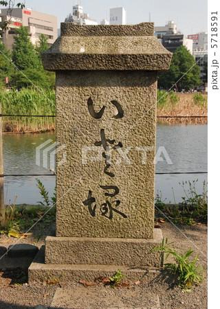 不忍池の弁天島に立つ「いと塚」(上野恩賜公園/東京都台東区) 5718591