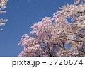 桜吹雪 5720674