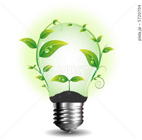 電球と植物 5720704