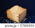 新米 お米 コメの写真 5766950