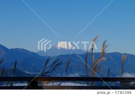 一丁平からの富士山 5782386