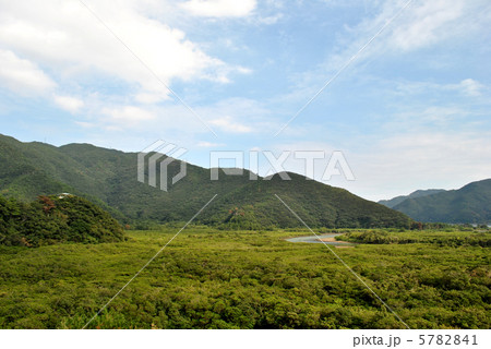 住用町マングローブ国定公園 5782841