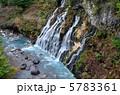 白髭の滝 白ひげの滝 しらひげの滝の写真 5783361