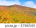 栗駒山 山 風景の写真 5786585