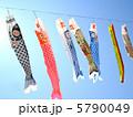 鯉のぼり 5790049