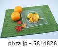 かき 柿 カキの写真 5814828