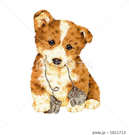 可愛い犬 コ ギ のイラスト素材 5821713 Pixta