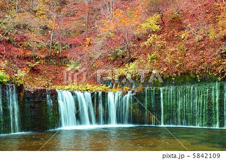 秋の白糸の滝 5842109
