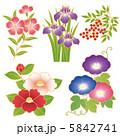 和花 ベクター 花のイラスト 5842741