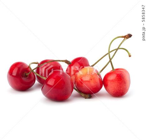 Cherryの写真素材 [5858347] - PIXTA