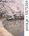 桜 イメージ 5875264