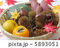 毬栗 クリ 食材の写真 5893051