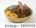 毬栗 クリ 食材の写真 5893058