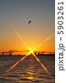 朝日 東京ゲートブリッジ 朝陽の写真 5903261