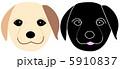ラブラドール・レトリバー ドッグ 動物のイラスト 5910837