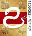 白ヘビ 白蛇 巳のイラスト 5920021