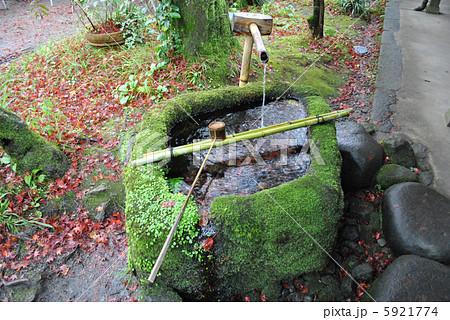 苔に覆われた水基 5921774
