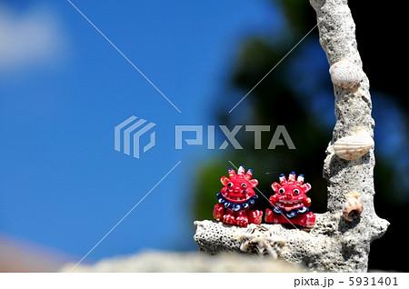 沖縄 竹富島で見つけた風景 5931401