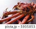 松葉蟹 5935853