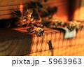 蜂蜜 養蜂 ミツバチの写真 5963963