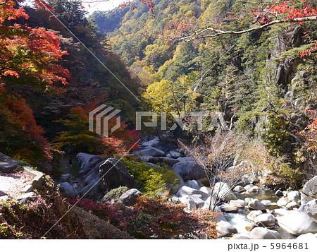 昇仙峡の紅葉 5964681