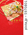 年賀状素材 白蛇 干支の写真 5970801