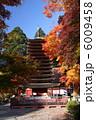 談山神社 紅葉と十三重塔 6009458