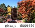 談山神社 紅葉と十三重塔 6009459