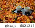 散り紅葉とお茶 6021214