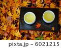 散り紅葉とお茶 6021215