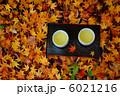 散り紅葉とお茶 6021216