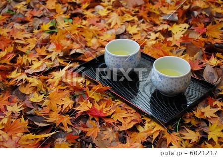 散り紅葉とお茶 6021217