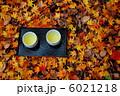 散り紅葉とお茶 6021218