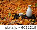 散り紅葉と酒 6021219