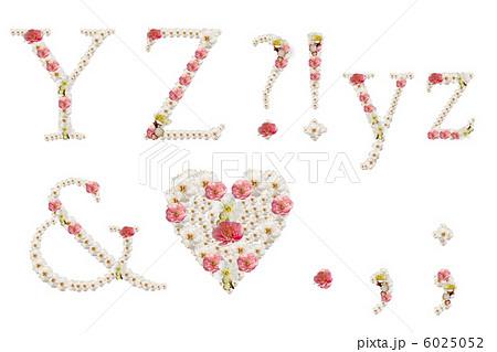 飾り文字(梅の花)YZ&記号 6025052