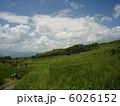 稲倉の棚田・夏イメージ(9) 6026152