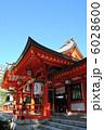 生田神社の本殿です。(神戸市中央区) 6028600