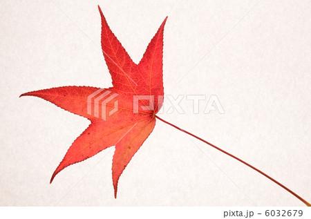 紅葉の写真素材 [6032679] - PIXTA