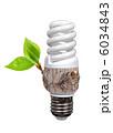 エコ 環境の 環境的にの写真 6034843