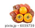 かき 柿の実 果物の写真 6039739