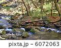 清流 滝川渓谷 渓谷の写真 6072063