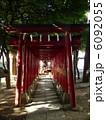 花園神社 6092055