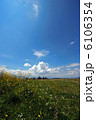 Beautiful landscape 6106354