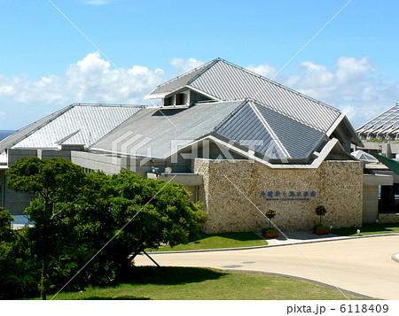 沖縄美ら海水族館 6118409